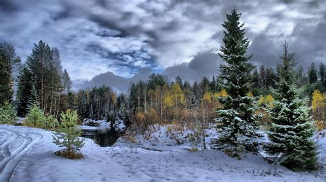 wallpaper hd 1920x1080 winter winter scene photos download superb winter scene