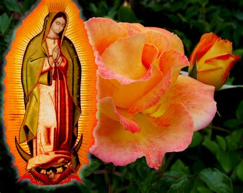 free wallpaper virgen guadalupe feast of our lady of guadalupe wallpapers hd download