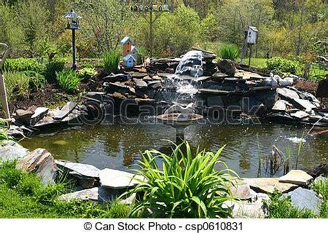 stagno giardino acqua stagno giardino scotia giardino acqua