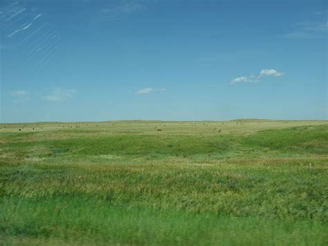 Cheyenne Also Search For Cheyenne River Indian Reservation Wikidata
