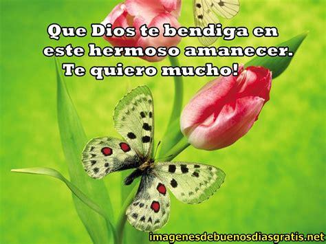imagenes de mariposas buenos dias bellas imagenes gratis de buenos dias imagenes de buenos