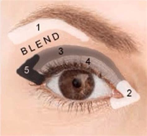 eyeshadow tutorial everyday everyday eyeshadow tutorial beautyfashion co
