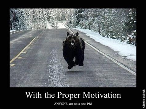 Running Bear Meme - bear motivation run faster health fitness pinterest