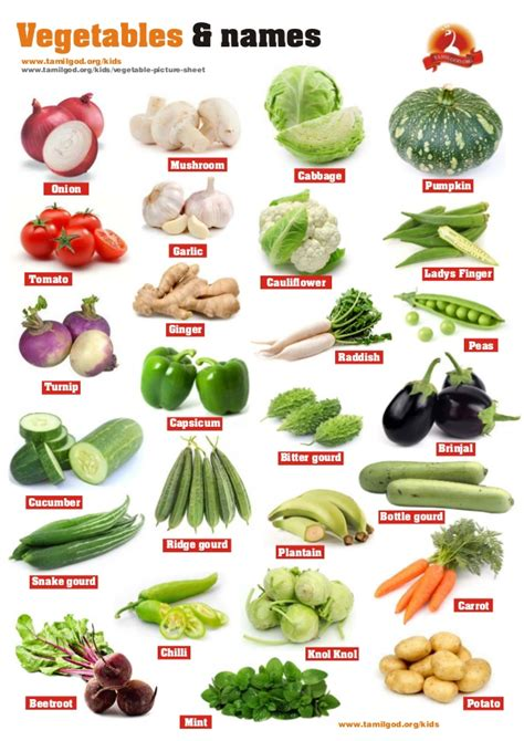 6 vegetables name vegetables and names