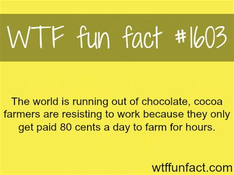 10 Interesting Facts About Chocolate by On A Budget Quot Quot Facts
