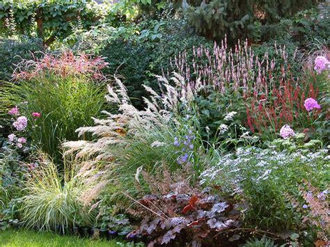 pflegeleichte pflanzen für den vorgarten f 252 r dieses beet mit stauden und gr 228 sern kann ein