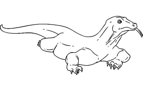 komodo dragon drawing www pixshark com images