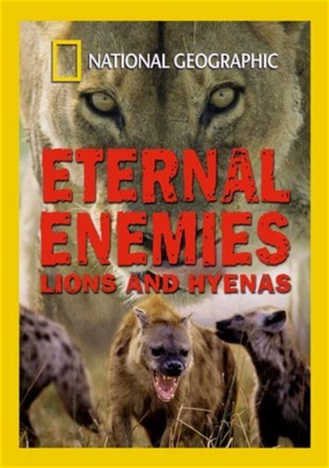 lion film national geographic national geographic eternal enemies lions and hyenas