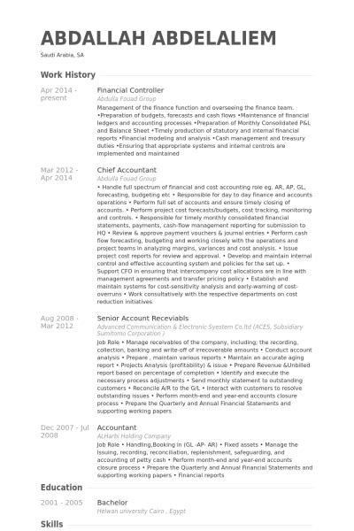 sle cv for financial controller financial controller resume exle cv templates