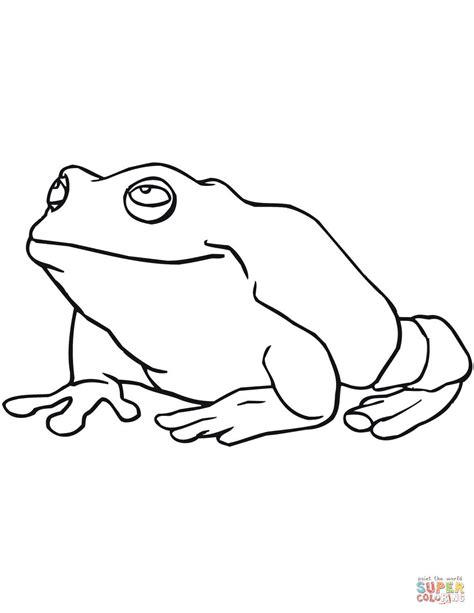 imagenes de sapos faciles para dibujar kolorowanka wielka żaba kolorowanki dla dzieci do druku