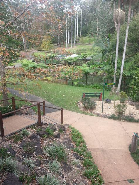 tamborine mountain botanic gardens tamborine mountain botanic gardens brisbane