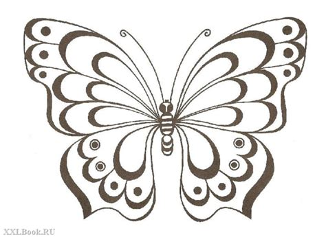 Butterfly Painting Template трафареты и контурные рисунки бабочек обсуждение на liveinternet российский сервис онлайн
