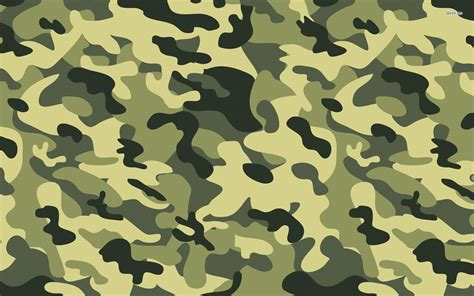 pattern of behaviour synonym list of synonyms and antonyms of the word camouflage