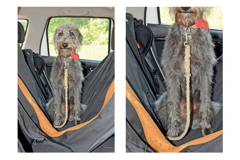 Kurgo Wander Hammock kurgo wander hammock best in car guards and harnesses auto express