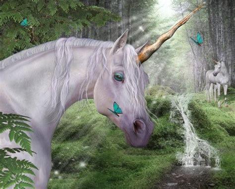imagenes unicornio asiatico fantasia unicornio
