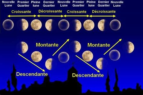 Calendrier Lunaire Nord De La Influence De La Lune Sur Notre Culture De Cannabis