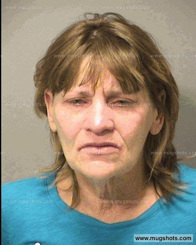 Porter County Court Records Robin Janeene Palhegyi Mugshot Robin Janeene Palhegyi Arrest Porter County In