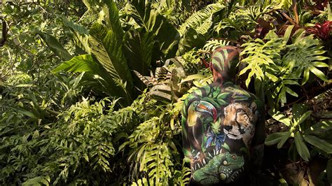 camoflage paint painting camouflage rainforest biome project
