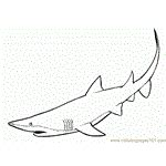 shark fin coloring page great white shark diving coloring page free shark
