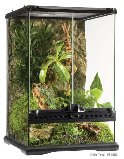 exo terra natural terrarium mini advanced reptile habitat