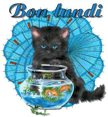 buon lunedi gif 2   gif images download