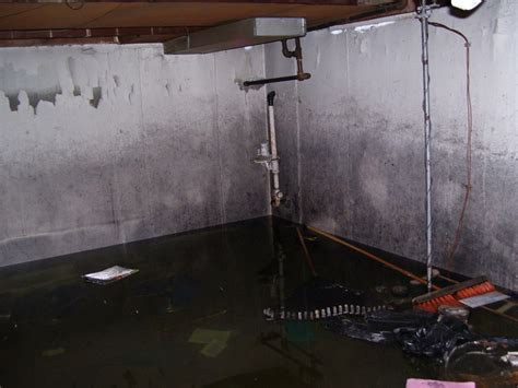 sewer is backing up in basement flooded basement cleaning and restoration in east pointe