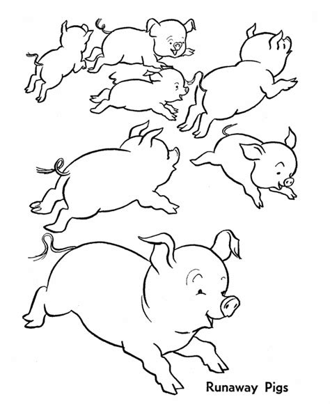 coloring page pig coloring home