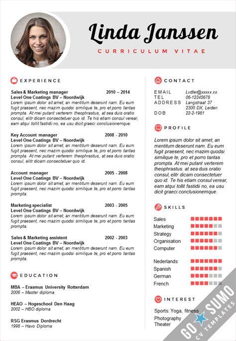 elon musk resume template elon musk resume resume ideas