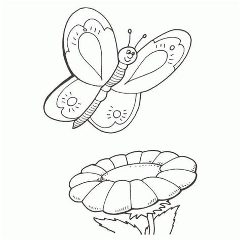 imagenes de mariposas y flores para dibujar mariposas para colorear pintar e imprimir