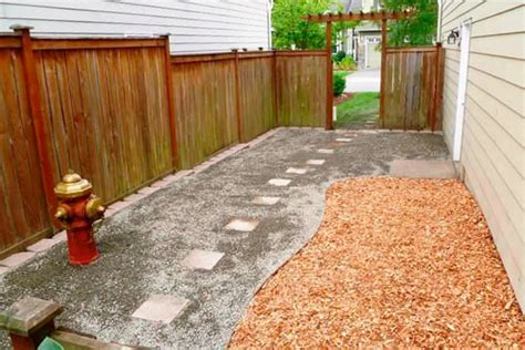 do dogs need grass backyard dog friendly yard with mulch