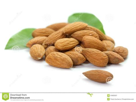 heap of almonds stock photo image 54605597