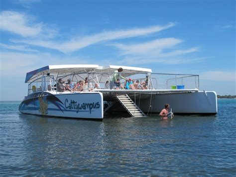 deck boat vs pontoon rough water boat rental vs tour boat which is right for you