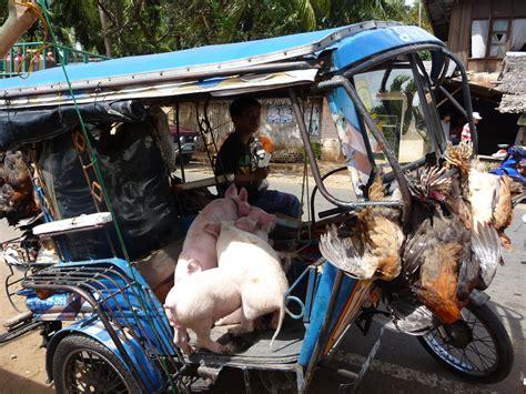 Motorrad Kaufen Und Nach Hause Fahren by Philippinen Reisebericht Quot Sollen Wir Eine Kuh Kaufen Quot