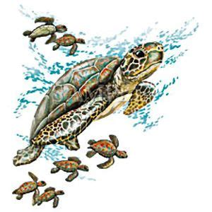 tattoo flash turtle 8 best images about my style on pinterest cardinal bird