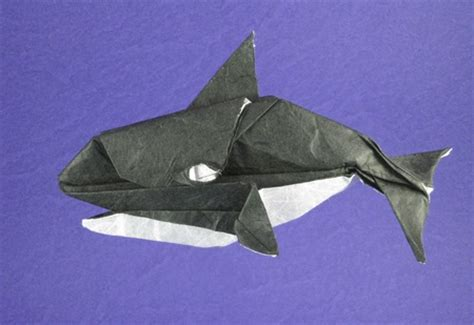 Origami Killer Whale - the gallery for gt origami killer whale