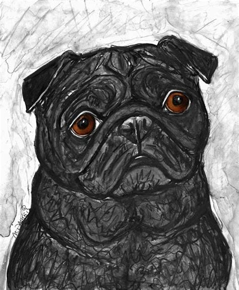 southern nevada pug rescue black puga jpg by melinda dalke from to the dogs
