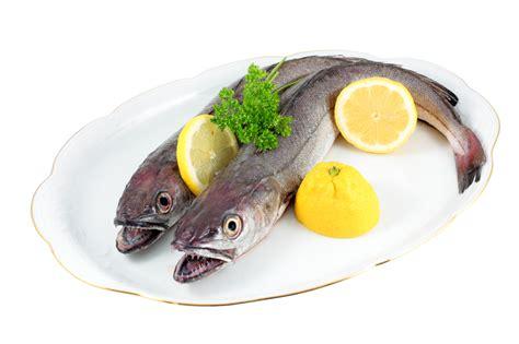 Bor Fisch Fisch