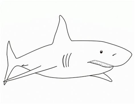 imagenes para colorear tiburon la chachipedia dibujos de tiburones para colorear