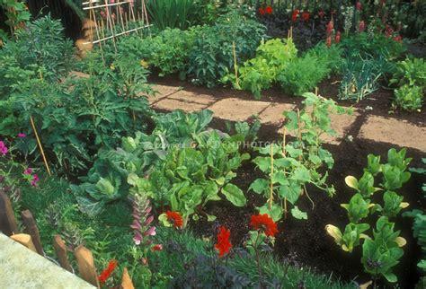vegetable garden flowers eat live grow paleo the vegetable garden