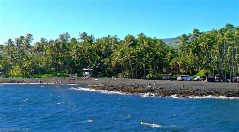 picture photo black sand beach at punaluu big island punalu u black sand beach big island turtles swimming