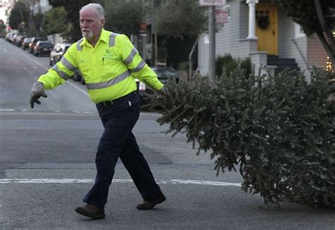 how to recycle your holiday tree in cities around the san