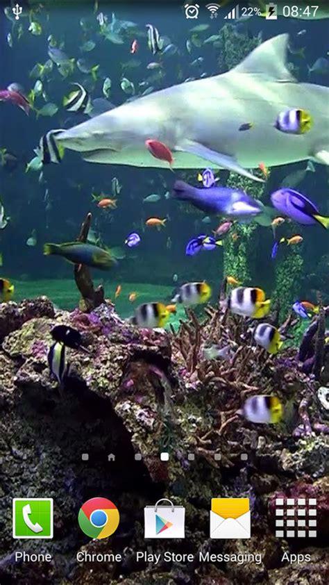 Android Aquarium Live Wallpaper Apk by Aquarium Live Wallpaper Free Android Live Wallpaper