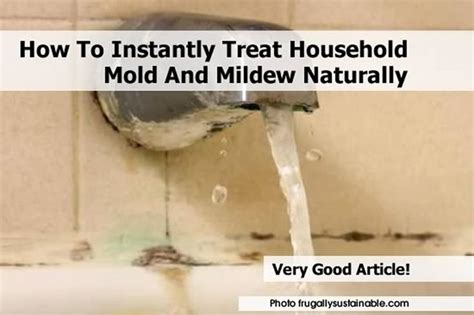 how to get rid of mold around bathtub how to treat mold and mildew naturally sandwiches