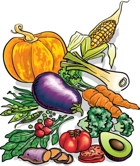 fruits and vegetables clipart fruit and vegetable clip pachiropractors