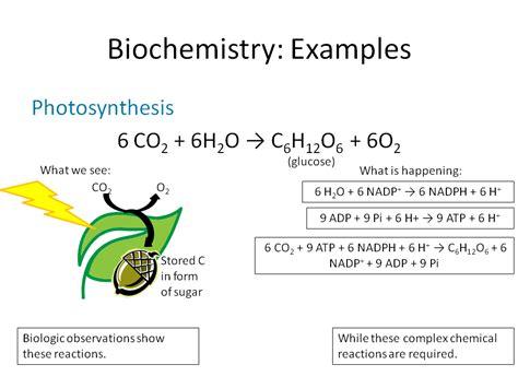 Balanced Photosynthesis Equation photosynthesis equation balanced ksiqno