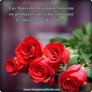 frases rosas im 225 genes de rosas rojas con dedicatorias de amor para