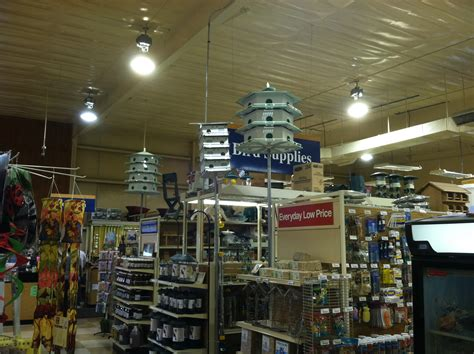 purple martin houses new braunfels feed supply