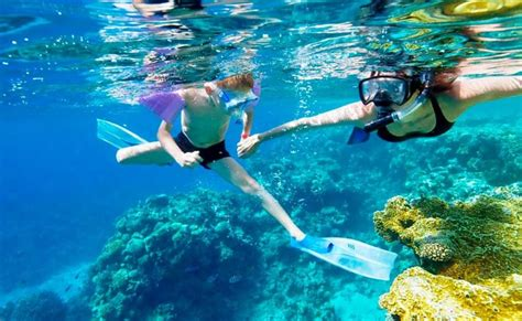 snorkeling at pattaya thrillophilia