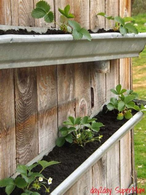 Gutter Strawberry Planter by 23 Extraordinary Beautiful Ways To Repurpose Gutters