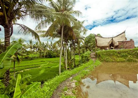 airbnb indonesia 10 most incredible airbnb accommodations in the asean